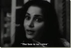 Bhanwra bada naadan